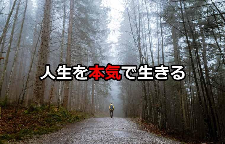 f:id:soul-vibration:20171211213845j:plain